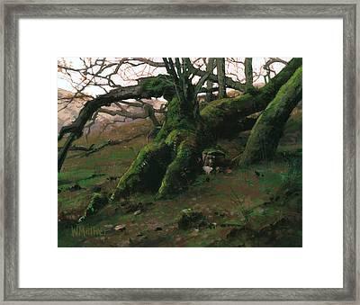 Mossy Oak Framed Print by Bill Mather