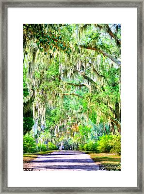 Framed Print featuring the photograph Mossy Oak Pathway H D R by Lisa Wooten
