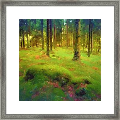 Mossy Woods Framed Print by Lutz Baar