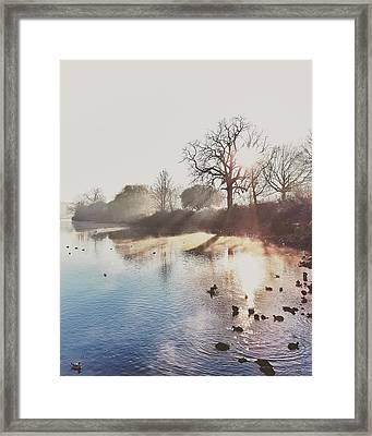 Mote Park Winter Morning  Framed Print by Stuart Ellesmere
