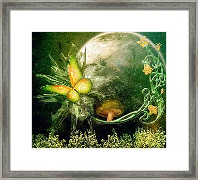 Moth After Midnight Framed Print by Ally  White
