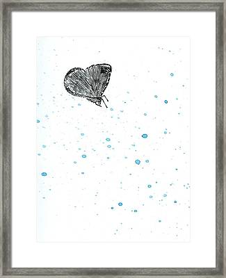 Moth Framed Print by Bella Larsson