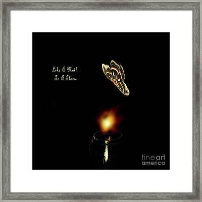 Moth Drawn To A Flame Framed Print by Linda Troski
