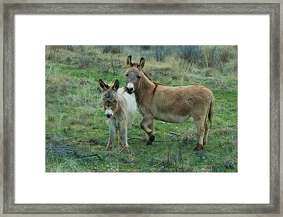 Mother And Child Framed Print by Bill Willemsen
