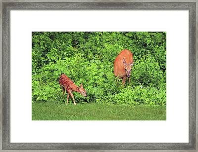 Mother And Child Framed Print by Karol Livote