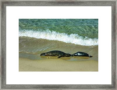 Mother And Child Kiss Framed Print by Georgia Mizuleva