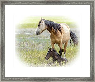 Mare And Foal Framed Print by Joe Hudspeth