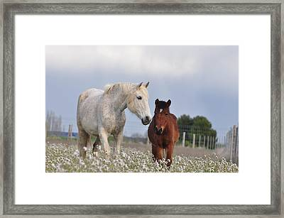 Mother And Son Framed Print by By Ana_gr