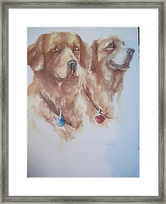 Mother And Son Golden Retrievers Framed Print by Peg Whiting