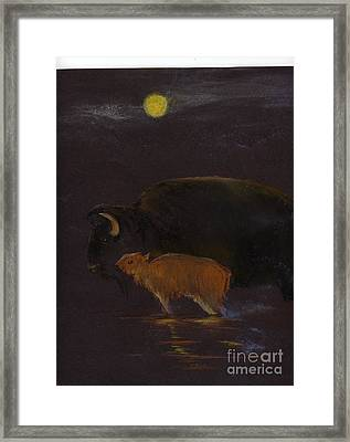Mother Bison And Calf Framed Print by Mui-Joo Wee