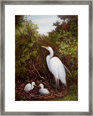 Mother Egret And Nestlings Framed Print