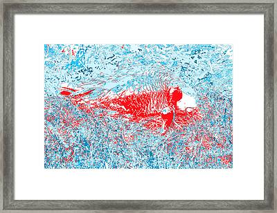 Mother Goose Hides From Fox Framed Print by Chris  Taggart
