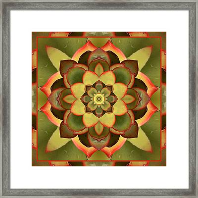 Mother Lotus Framed Print