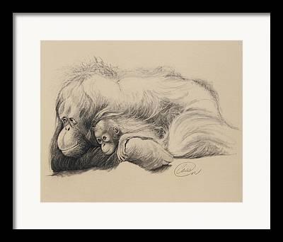 Parental Care Drawings Framed Prints