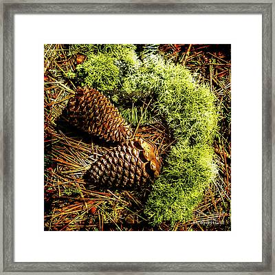 Mother Nature And Father Earth Best Treasures Chest Framed Print by Mona Stut