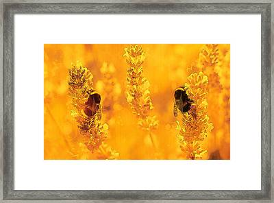 Framed Print featuring the digital art Mother Nature At Work    by Fine Art By Andrew David