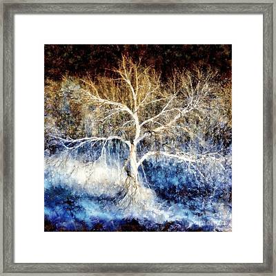 Mother Natures Dance Framed Print by Janine Riley