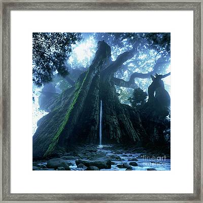 Mother Tree Framed Print by Tatsuya Atarashi