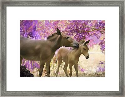 Motherly Love Framed Print by Judy Kay