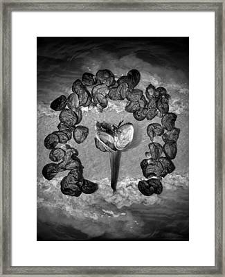 Motherpod And The Sea Framed Print by Richard Smith