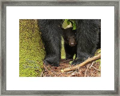 Mothers Day Bear Card Framed Print by Everet Regal