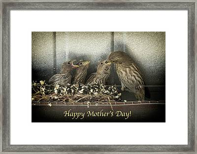 Framed Print featuring the photograph Mother's Day Greetings by Alan Toepfer