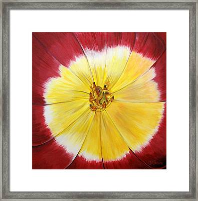 Mothers Day Tulip Face Framed Print by Catalina Decaire