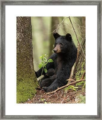 Mothers Loving Care Framed Print by Everet Regal