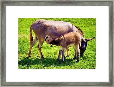 Mother's Milk Framed Print