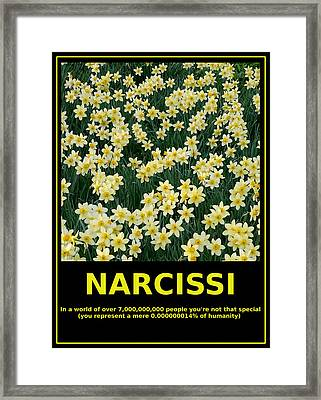 Motivational Irony - Narcissi Perspective Framed Print