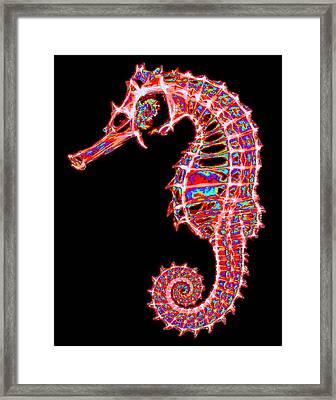 Motley Hippocampus Framed Print