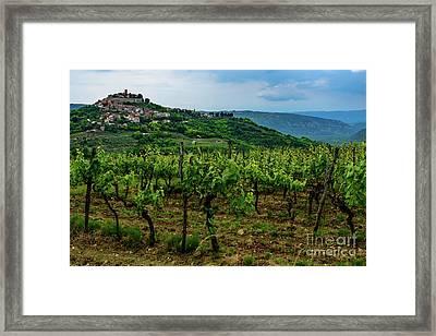 Motovun And Vineyards - Istrian Hill Town, Croatia Framed Print