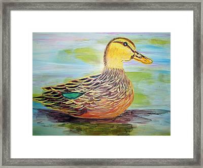 Mottled Duck Framed Print by Belinda Lawson