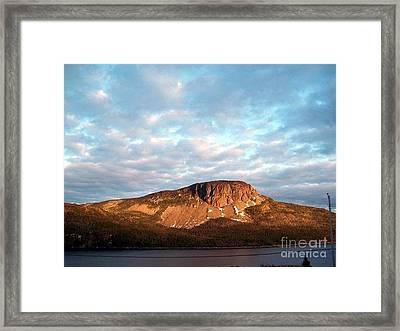 Mottled Sky Of Late Spring Framed Print by Barbara Griffin