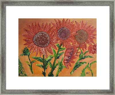 Moulinrouge Sunflowers Framed Print by James Bryron Love