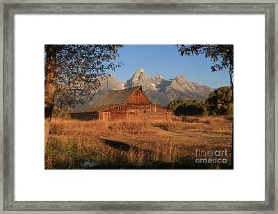 Moulton Barn At Sunrise Framed Print