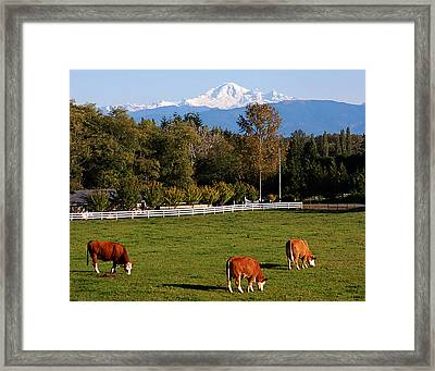 Mount Baker From Langley Bc Framed Print by Marion McCristall