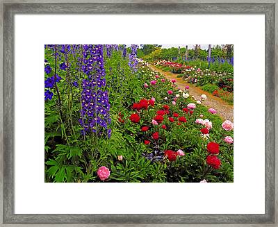 Mount Congreve Gardens, Co Waterford Framed Print by The Irish Image Collection