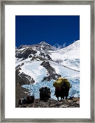 Mount Everest Framed Print