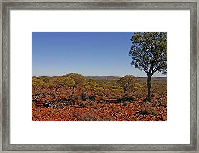 Mount Gibson Station Wa Framed Print