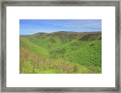 Mount Greylock Stony Ledge Spring Leafout Framed Print by John Burk