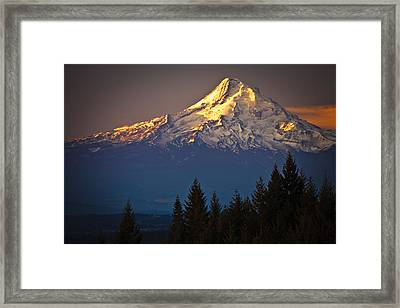 Mount Hood From The North Framed Print by Ed Book