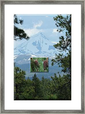 Mount Jefferson With Pines Framed Print