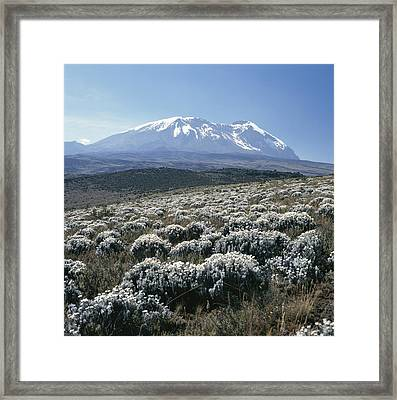 Mount Kilimanjaro, The Breach Wall Framed Print by David Pluth