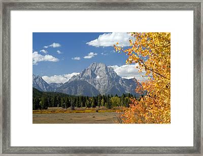 Mount Moran In Autumn Framed Print by Larry Ricker