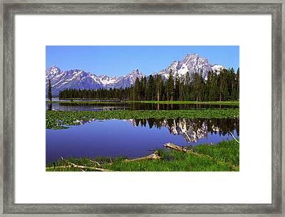 Mount Moran Tetons Nat'l Park Framed Print by Alan Lenk