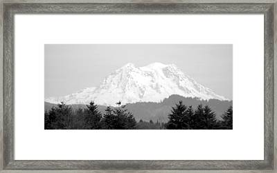 Mount Rainier Black And White Framed Print by Laurie Kidd