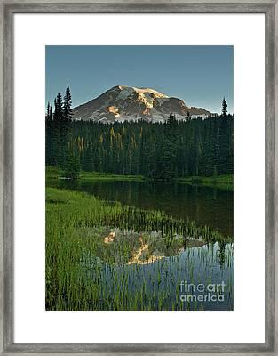 Mount Rainier Dawn Reflection Framed Print by Mike Reid