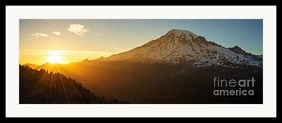Washington Beauty Framed Prints