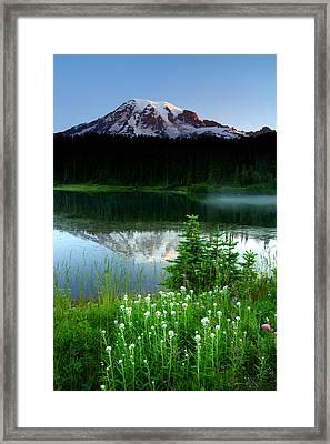 Mount Rainier Reflections Framed Print by Eric Foltz